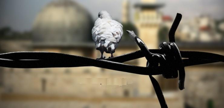 روند بی پایان خیانت  اعراب به قضیه فلسطین